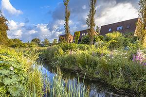 Entwässerungsgraben im Wohngebiet